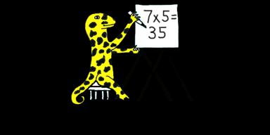 math salamanders zone logo