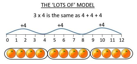 lots of multiplication model