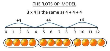 lots of multiplication model