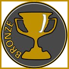 Bronze award image